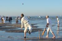 Bramble Bank Cricket Match Results